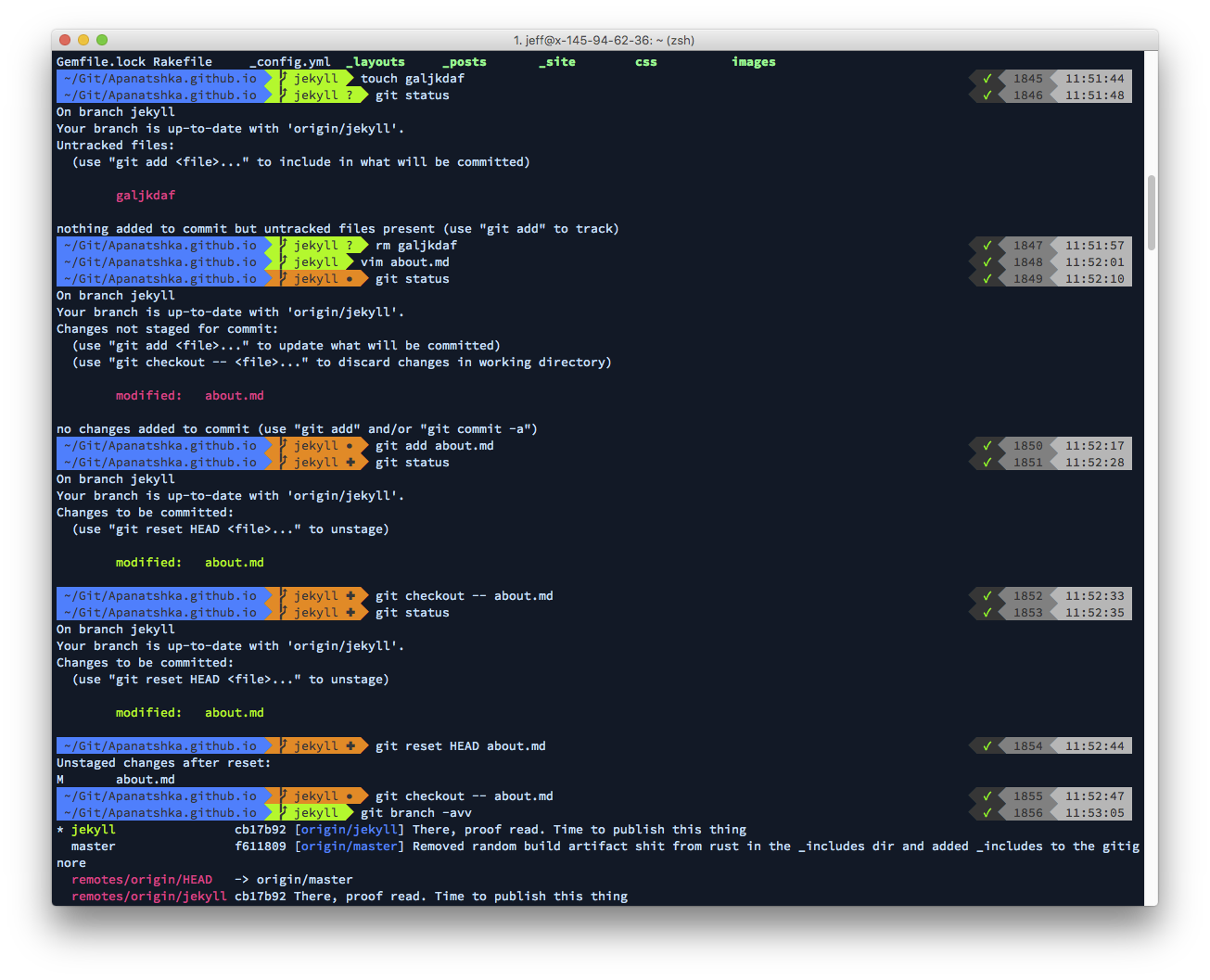 A Zsh terminal, with the powerlevel9k theme (default settings), and the Gogh Aci colour scheme on the font Source Code Pro